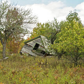 Michael Peychich - The Old Homestead and Orchard