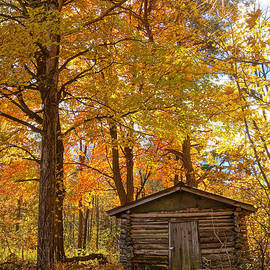 Kathi Mirto - The Old Log Shed