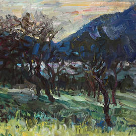 Juliya Zhukova - The old olive trees