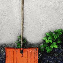 RC deWinter - The Old Orange Shovel