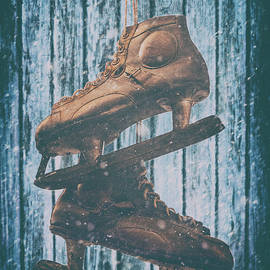 Iryna Burkova Goodall - The Old Skates