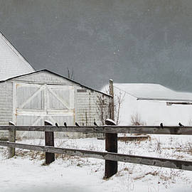 Robin-lee Vieira - The Old White barn