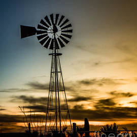 Robert Bales - The Old Windmill