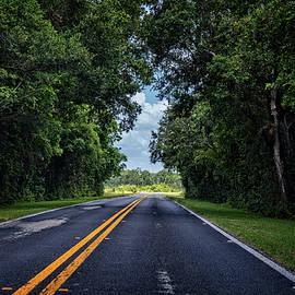 Saija Lehtonen - The Open Road is Calling