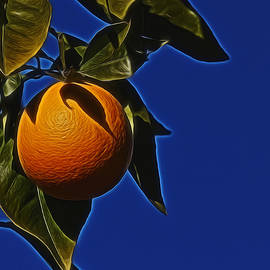 Ernie Echols - The Orange Digital Art