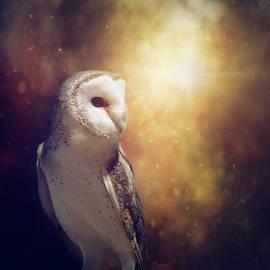 Margaret Goodwin - The Owl
