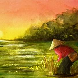 Therese Alcorn - The Paddy Field