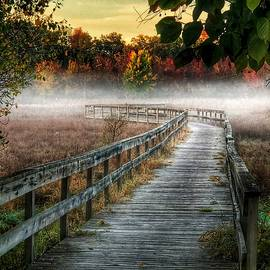 Jill Love - The Peaceful Path