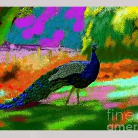 Moscolexy Moscolexy - The peacock