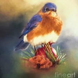 Tina LeCour - The Pondering Bluebird