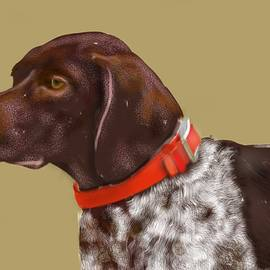 Lois Ivancin Tavaf - The Pooch With a Red Collar