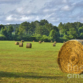 Reid Callaway - The Productive Southern Hay Field