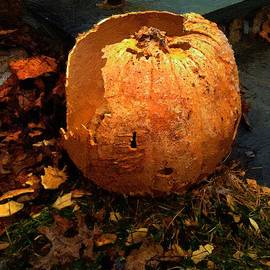 RC deWinter - The Pumpkin Shell