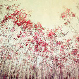 Priska Wettstein - The Red Forest