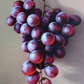 Aniko Vida - The red grape on the wall
