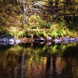 Diane Schuster - The Rich Tones of Autumn Reflected into Elk Creek