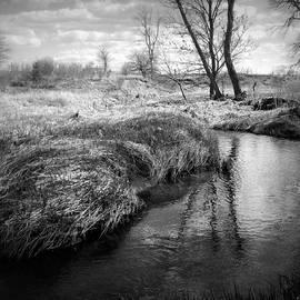 Belinda Olivastri - The River