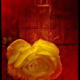 Rene Crystal - The Rose
