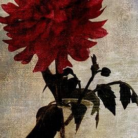 CJ Anderson - The Secret Of Your Soul