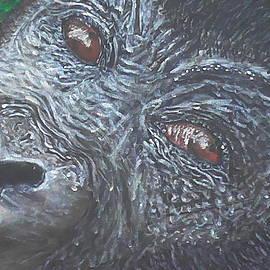 Robbie Nuwanda - The Skeptical Gorilla