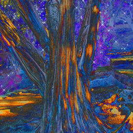 Wendy J St Christopher - The Sleeping Tree