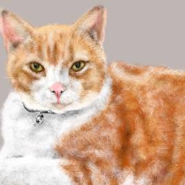 Lois Ivancin Tavaf - The Sly Cat
