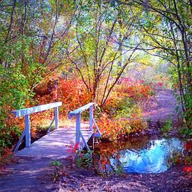Tara Turner - The Small Bridge at the Beginning of Autumn