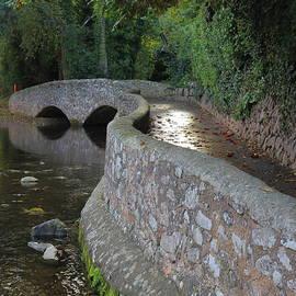 Rumyana Whitcher - The Snake Bridge