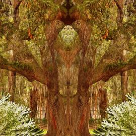 Lynda Lehmann - The Sorcerers Tree
