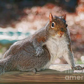 Sue Melvin - The Squirrel Show-off