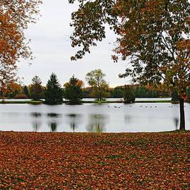 Debbie Oppermann - The Stillness Of Autumn
