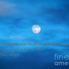 Janice Rae Pariza - The Sun Loved The Moon