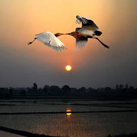 Bliss Of Art - The Sunset Kiss