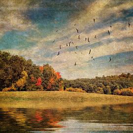 Pamela Phelps - The Tints of Autumn