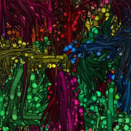 Kim Peto - The Tree in my Dream