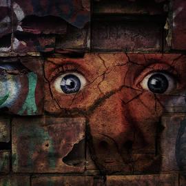 Terry Fleckney - The Wall