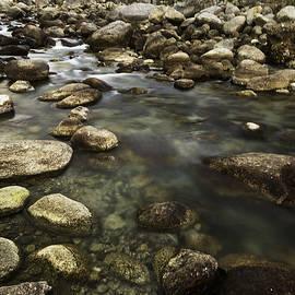 Rajiv Chopra - The Waters Flow
