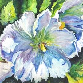 Carol Wisniewski - The White Hibiscus in Early Morning Light