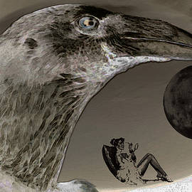 Sir Josef - Social Critic - The white raven is watching her
