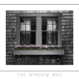 Mike Nellums - The Window Box poster
