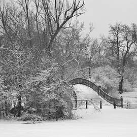 Daniel Thompson - The Winter White Wedding Bridge