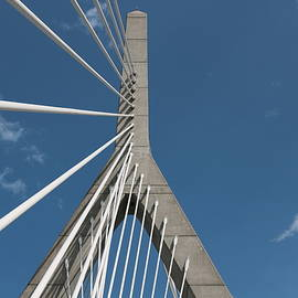 Roberto De Souza - The Zakim Bridge Lines