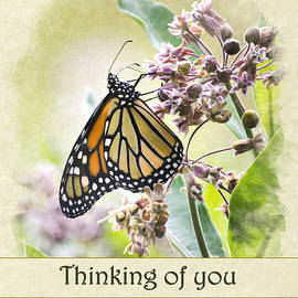 Christina Rollo - Thinking of You Monarch Butterfly Greeting Card