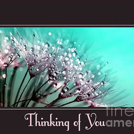 JH Designs - Thinking of You Painted Danelions