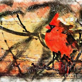 Tina  LeCour - This Old Cardinal