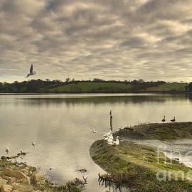 Linsey Williams - Thornton Reservoir view 2