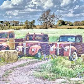 Janette Boyd - Three 1940 Ford Pickups For Sale