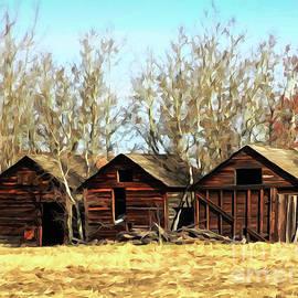 Bob Lentz - Three Brown Sheds