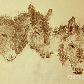 Sean Conlon - Three Donkeys