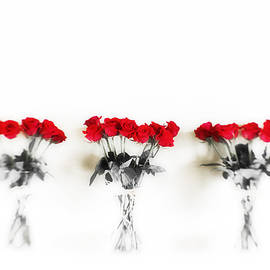 Scott Pellegrin - Three Dozen Roses